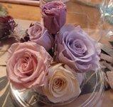 080513_preservedflower12