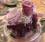 080513_preservedflower13