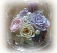 080513_preservedflower4