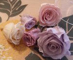 080513_preservedflower6