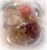 080513_preservedflower14