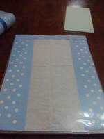 2009_0529_wrapping0014